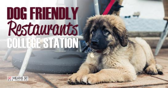 Dog friendly restaurants in College Station.