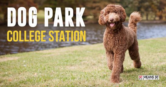 off leash dog parks college station