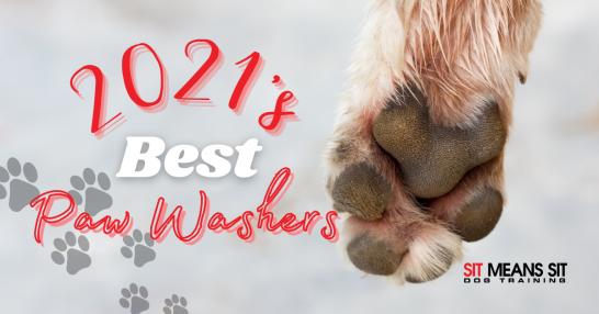 2021's Best Dog Paw Washers