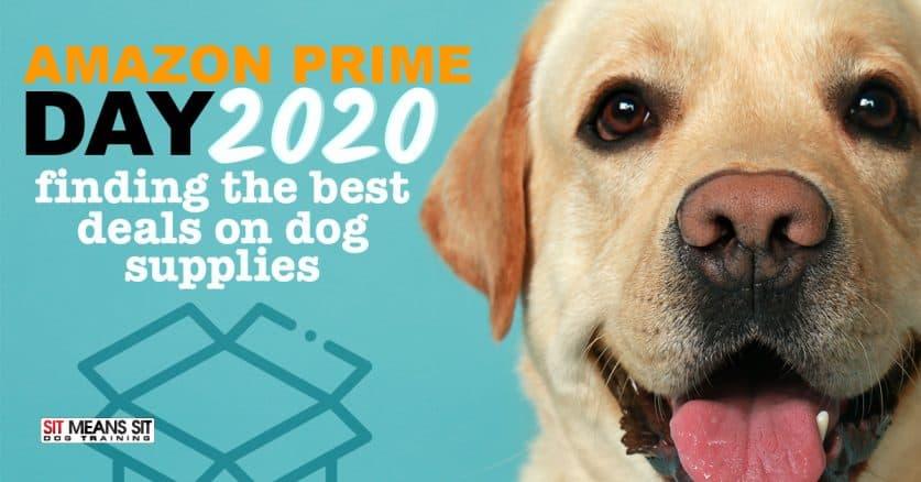 Amazon Prime Day of 2020