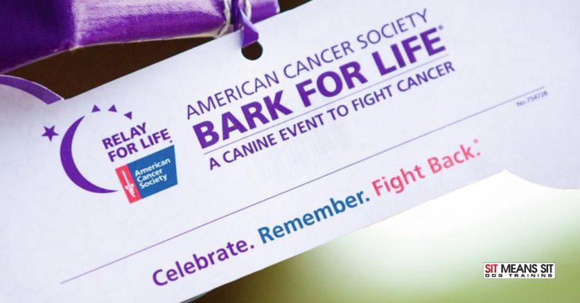 Bark for Life of Aggieland