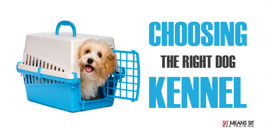 Choosing the right dog crate kennel for your dog.