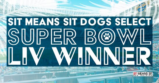 Sit Means Sit Dogs Select Super Bowl LIV Winner