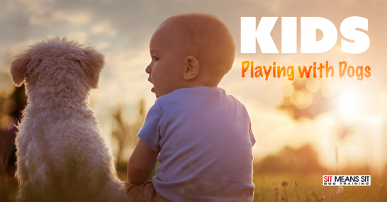 kids playing with dogs