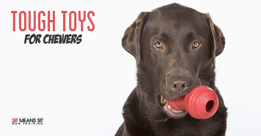 Tough dog toys for dogs that chew.